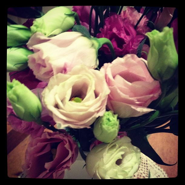 Favorite flowers xx