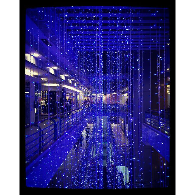 Christmas lights galore in Sigspore