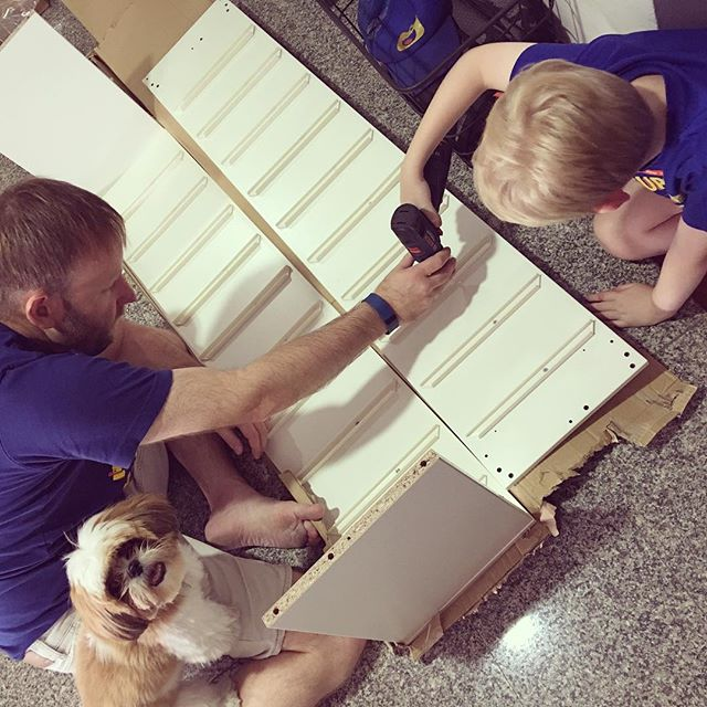 Everyone is helping with the IKEA flat pack construction - new LEGO storage.