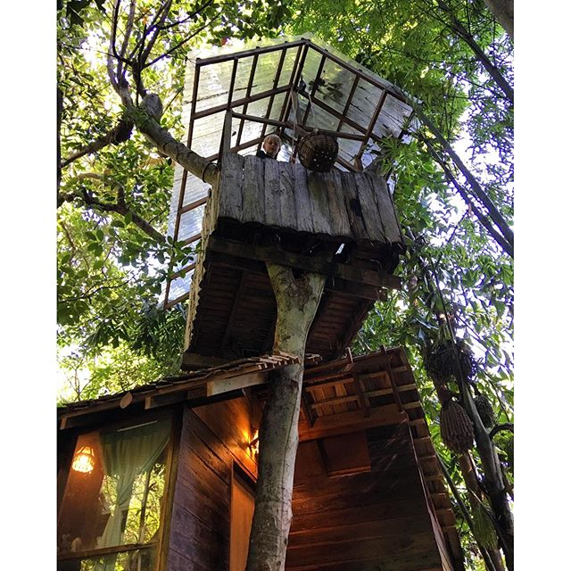 Our accommodation tonight! A treehouse ️