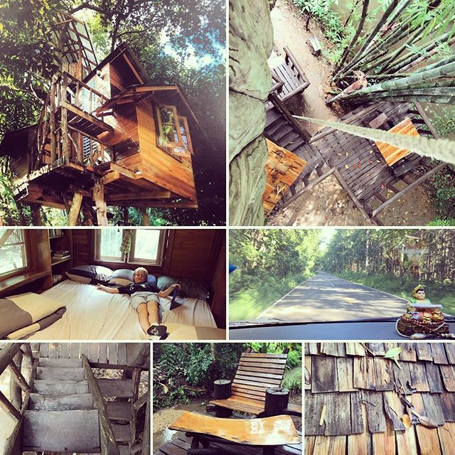 We stayed in the Jackfruit Treehouse. Such an amazing place ️