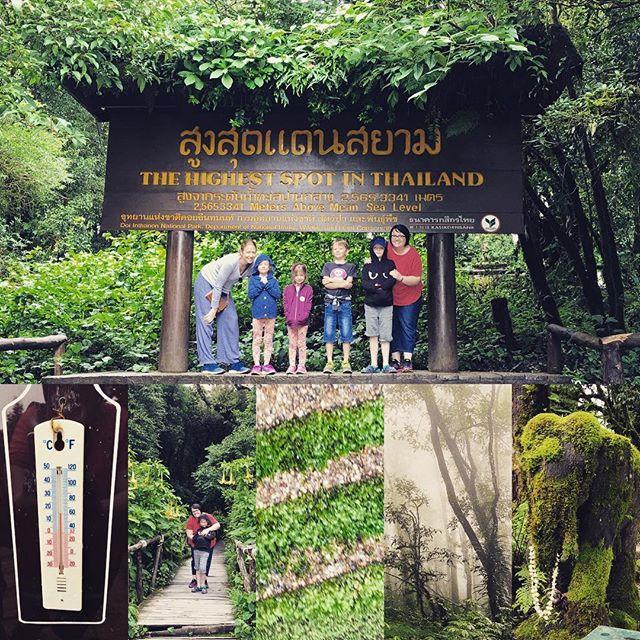 Trekking to the highest spot in Thailand