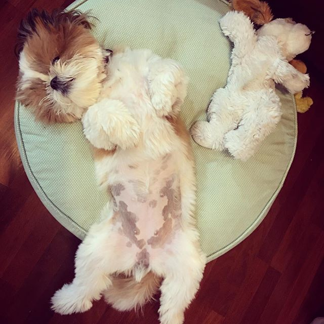 Relaxing........