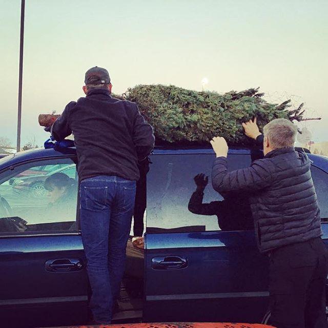 Christmas Tree shopping ️
