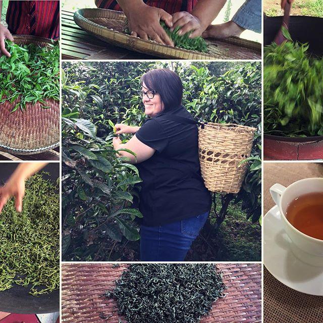 The tea making process.....best green tea